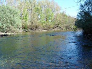 16.- Río Alagón en el paraje de su encuentro