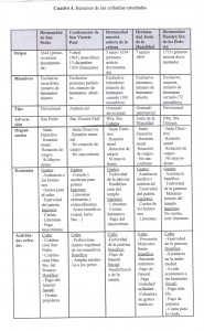 Cuadro 4 Resumen