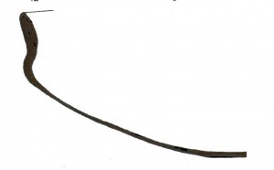 Figura 3 Croquis del perfil de una cazuela bruñida.