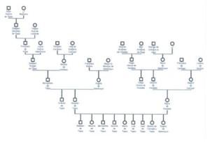 Lám 5bis. Genealogía de D. Bernardino de Tapia
